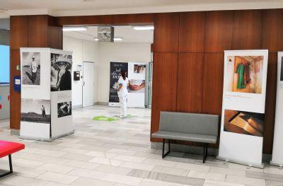 Výstava v Nemocnici Podlesí podporuje domácí péči a mobilní hospic